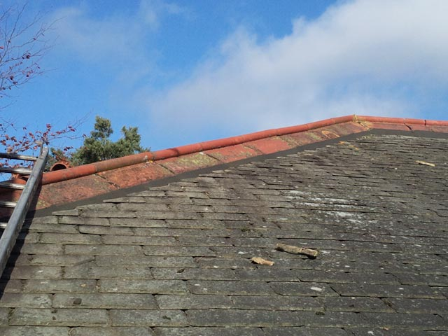 Renovation to Hip and Ridge Tiles on Roof Edge - After