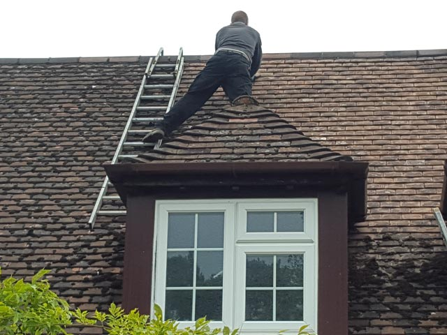 Cleaning Roof of Moss